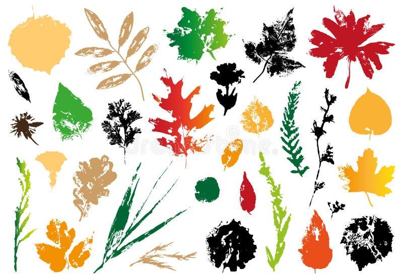 Odcisk jesień liście ilustracji