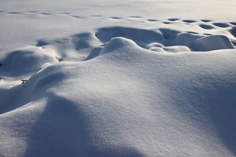 odcisk stopy śnieg fotografia stock