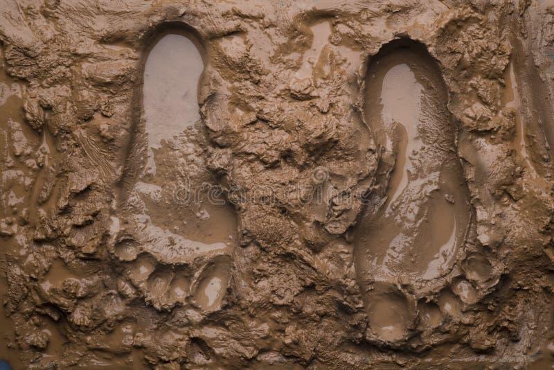 odcisk stopy błoto dwa mokre zdjęcie royalty free
