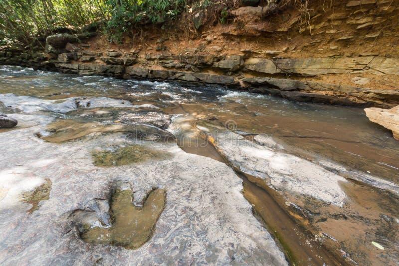Odcisk stopy dinosaura Carnotaurus na zmielonym pobliskim strumieniu przy Phu Faek lasu państwowego parkiem, Kalasin, Tajlandia W fotografia stock