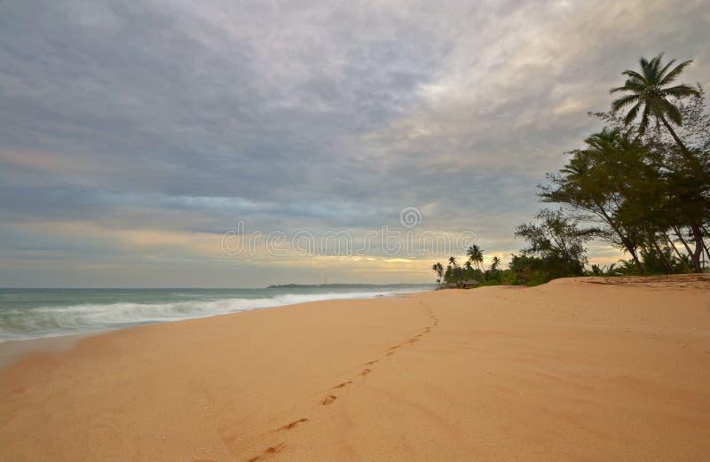 Odcisk stopy na pustyni plaży obraz royalty free