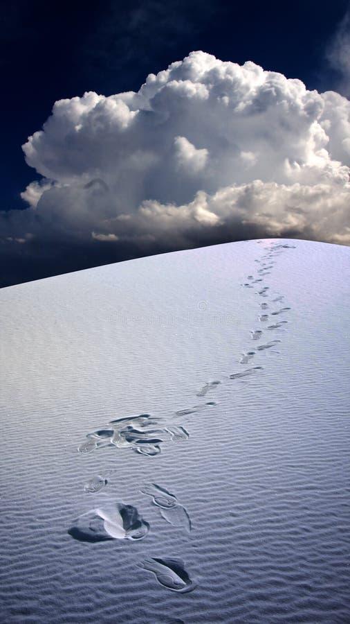 odcisk stopy pustynni piaski obraz stock
