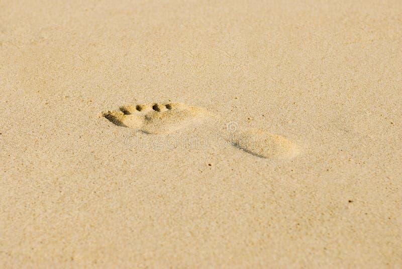 Odcisk stopy w piasku zdjęcia royalty free