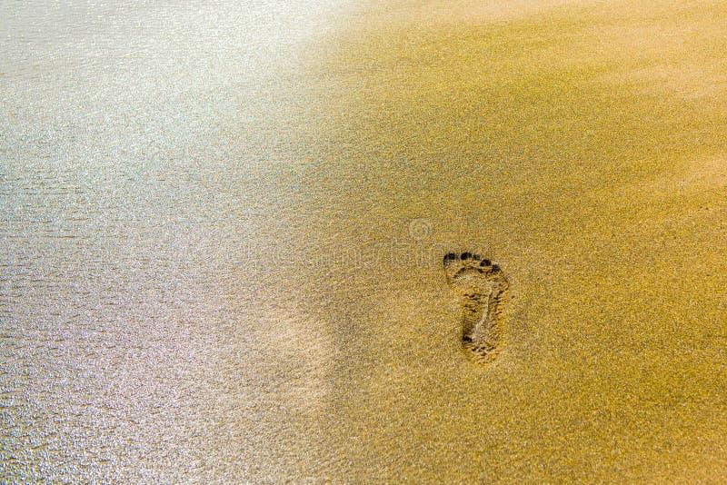 Odcisk stopy w piasku, Hawaje, usa Odbitkowa przestrzeń dla teksta obrazy royalty free