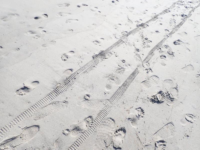 Odciski stopi i opona tropią w piasku na plaży fotografia royalty free