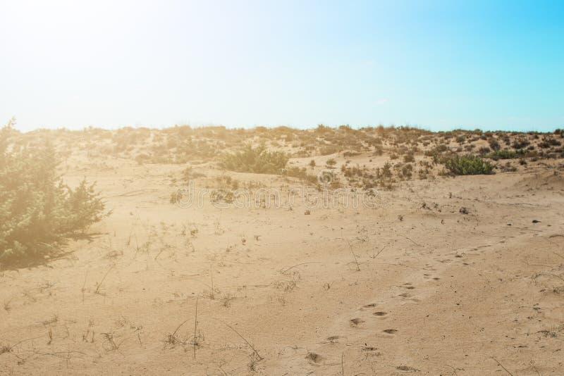 Odciski stopi w piasku w pustyni z sunligth zdjęcia stock