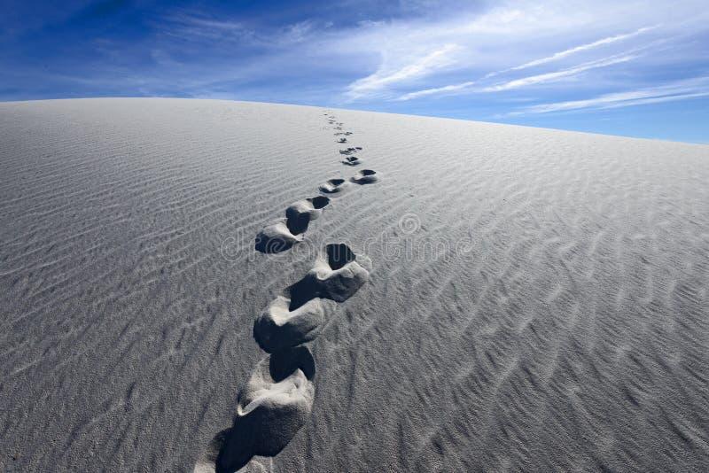 Odciski stopy na Białych piasków Krajowym zabytku zdjęcia stock
