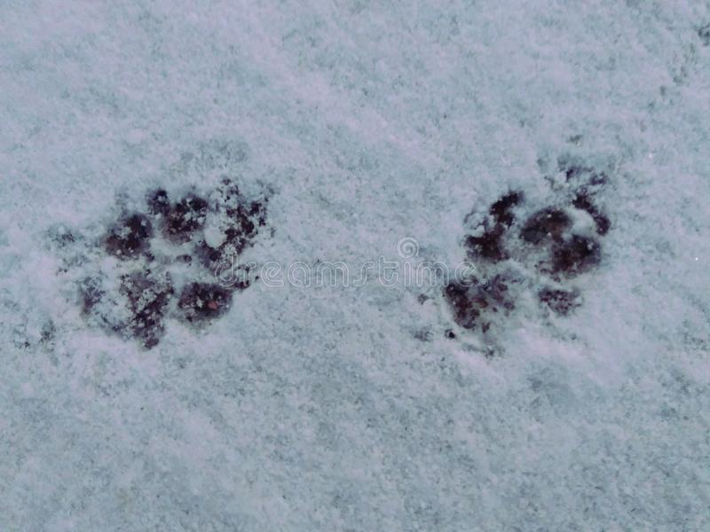 Odciski stopy rozjaśniają w okurzaniu śnieg obraz stock