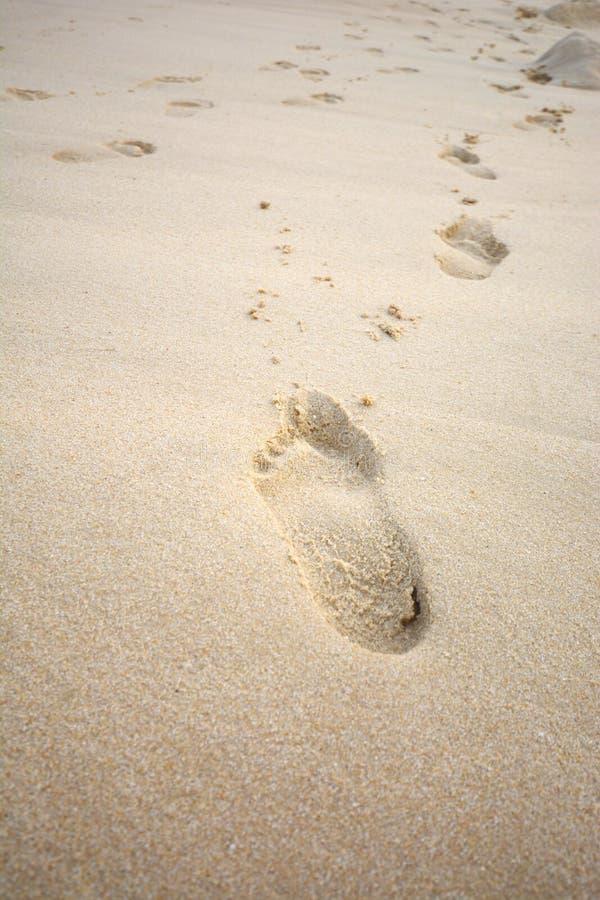 Odciski stopy w piasek plaży obrazy royalty free