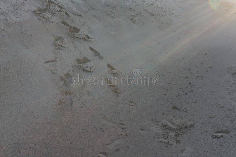 Odciski stopy w piaska śladzie podróżują tropikalnego, obrazy royalty free