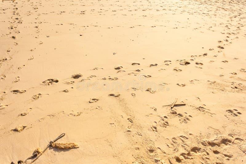 Download Odciski stopy w piasku obraz stock. Obraz złożonej z odtwarzanie - 53778885