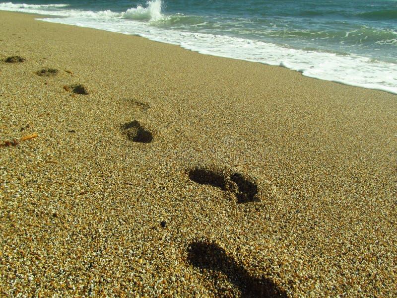 Odciski stopy w piasku przy plażą fotografia royalty free