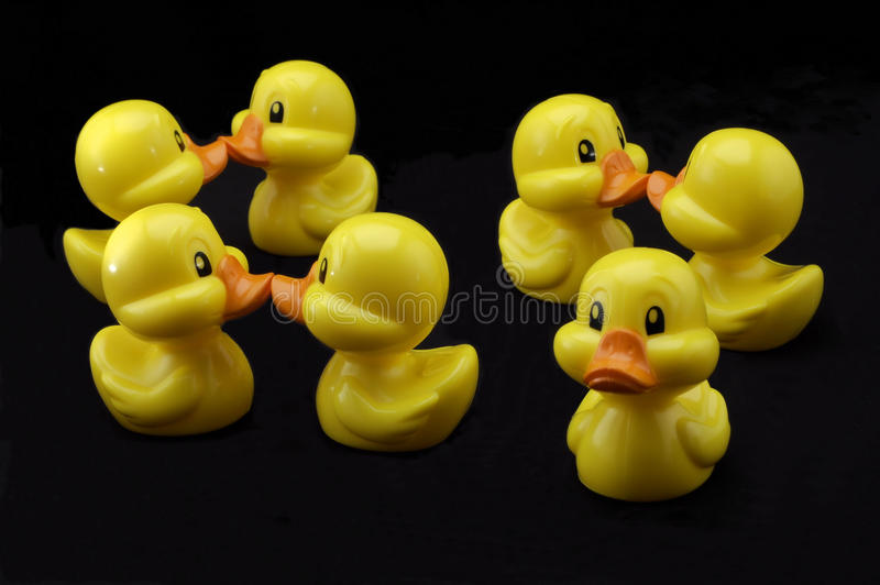 Download Odd duck out stock image. Image of bright, sadness, yellow - 13307257