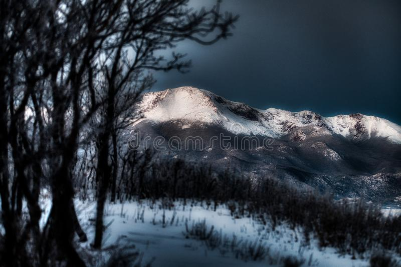 Dramatic and Surreal Snow Capped Mountains and Tree Sihlouettes Pikes Peak royalty free stock image