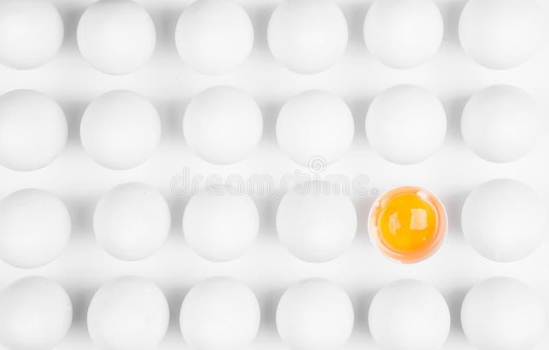 Odd Egg Out fotografia stock libera da diritti