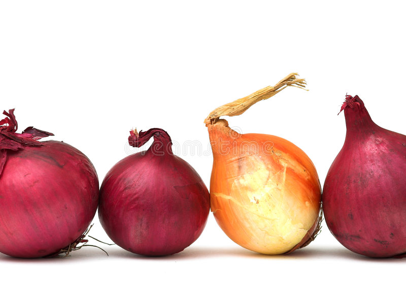 Download Odd One Out stock image. Image of ingredient, organic - 1365179