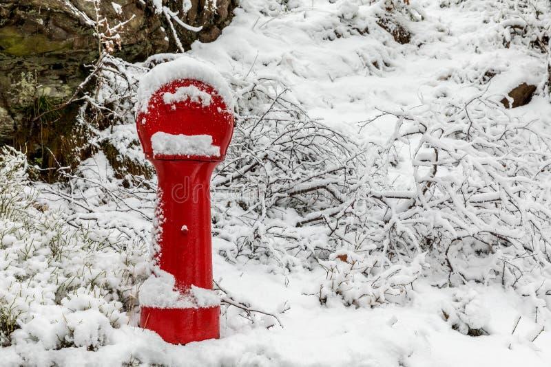 Odderoya in Kristiansand, Norwegen - 17. Januar 2018: Roter Hydrant von ESCO-Marke, bedeckt im Schnee Bild eingelassen lizenzfreie stockfotos
