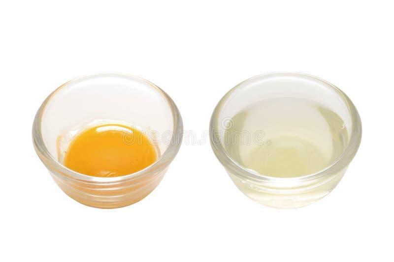 Oddzielony jajeczny biel i yolk fotografia royalty free
