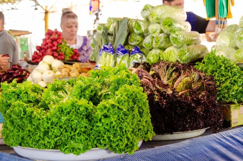 Odessa Ukraina - Juli 18, 2019 Privoz marknad Nya organiska grönsaker och gräsplaner på livsmedelsbutikmarknadsräknaren arkivfoto