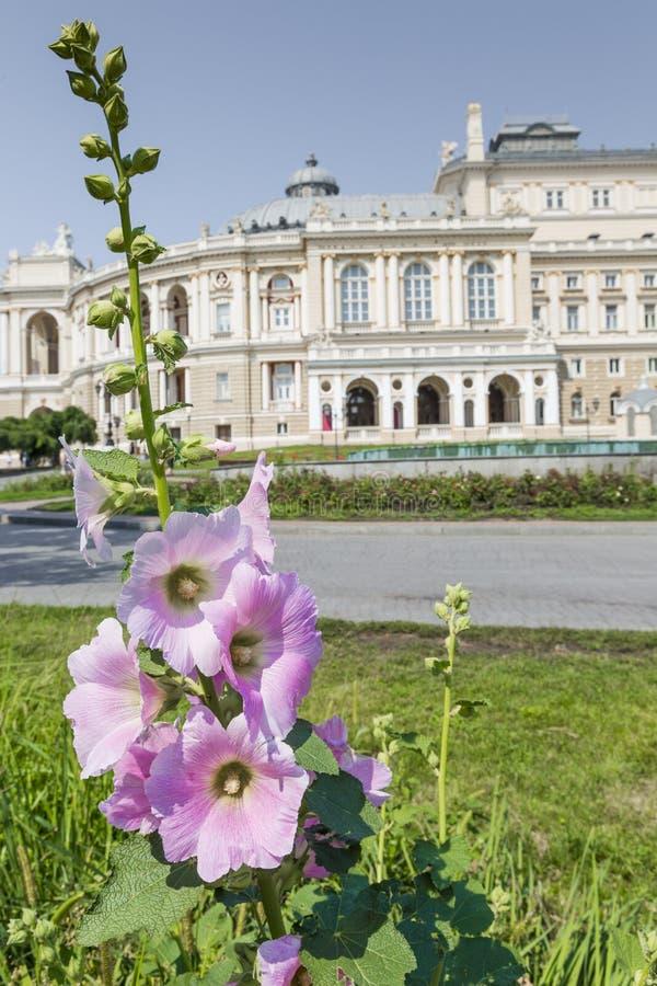 Download ODESSA, UKRAINE - 2 AOÛT 2016 : Odessa National Academic T Photo stock éditorial - Image du russe, universitaire: 76085373