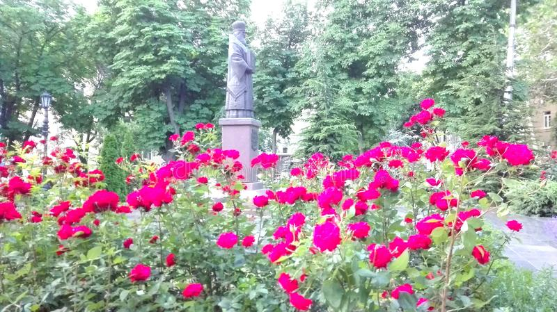 Odessa, Ukraine Ein Blick zu irgendeinem Hauptplatz, Park, Stadtgarten stockbilder