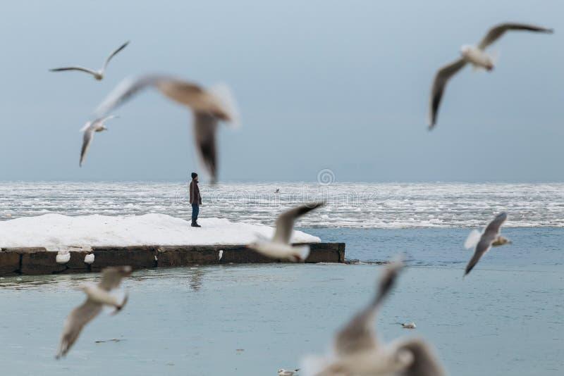 Odessa, Ukraine - Februar 2014 - ein Mann steht am Rand eines gefrorenen Winterpiers allein Um Fliegenseemöwe stockbild