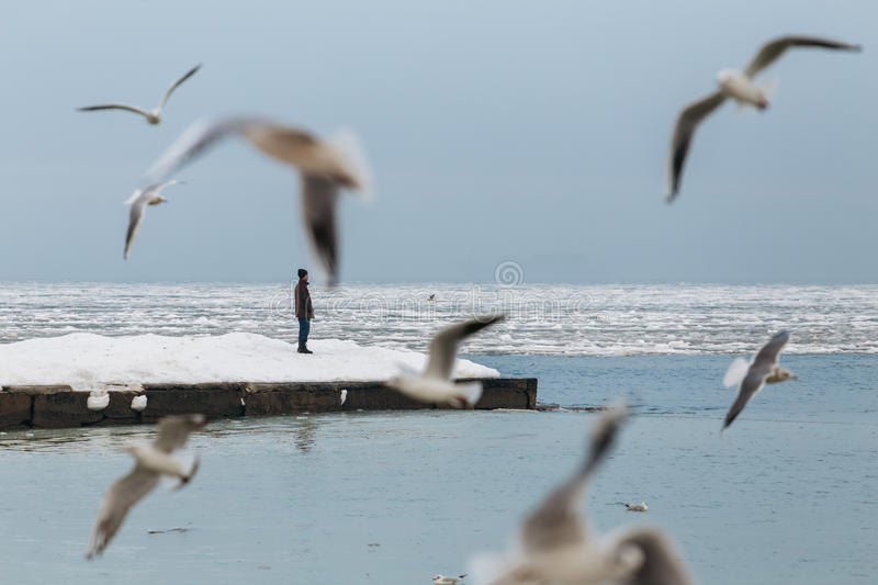 Odessa, Ukraine - February, 2014 - A man stands at the edge of a frozen winter pier alone. Around flying seagull stock image
