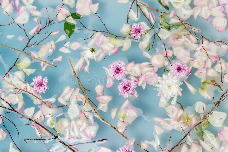 Odgórny widok wypełniający z wodą, kwiatami i płatkami skąpanie błękitnymi bąbla, obrazy royalty free