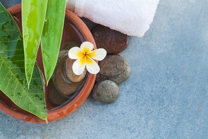 Odgórnego widoku biały tropikalny kwiat i geen liście i kamienie zdjęcie royalty free