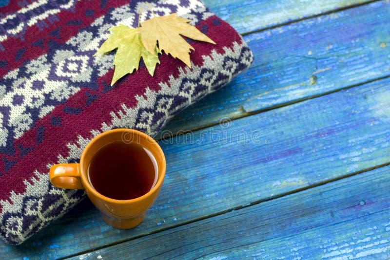 odgórnego widoku nagrzania napoju jesieni liście na knited pulowerze obrazy royalty free