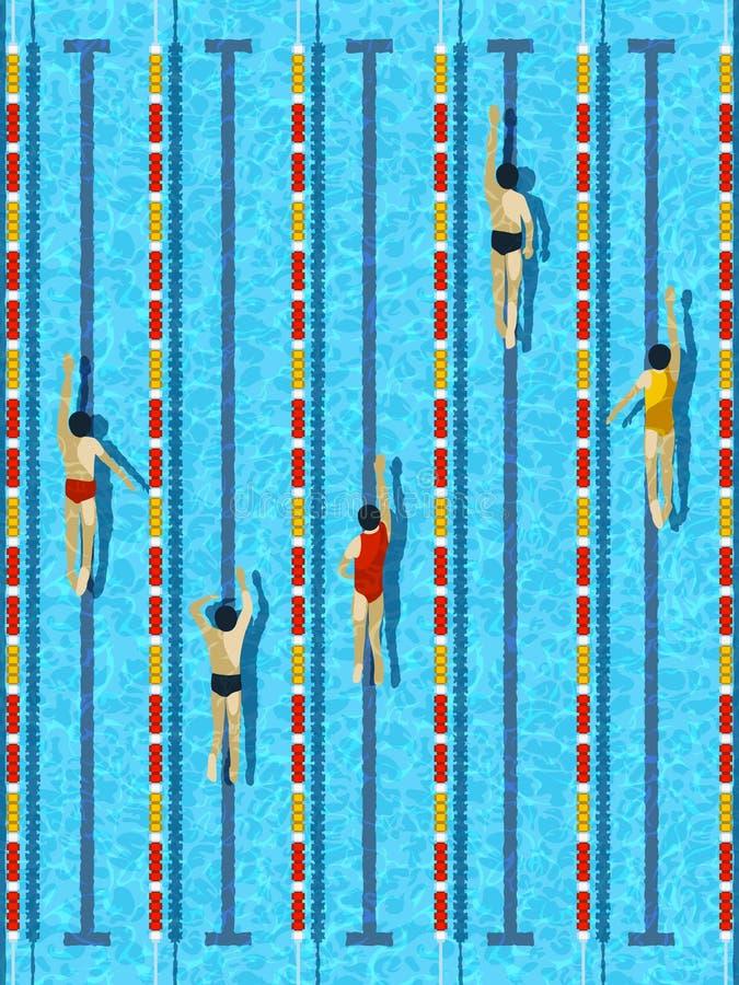 Odgórnego widoku pływacki basen z atlet pływaczkami wektorowymi ilustracja wektor