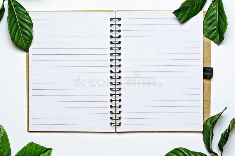 Odgórnego widoku wizerunek otwarty notatnik z pustymi stronami na białym biurku, to zakrywał rocznika stylu zieleni liśćmi obraz stock