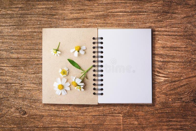 odgórnego widoku wizerunek otwarty notatnik z pustymi stronami obok chamomi zdjęcie stock