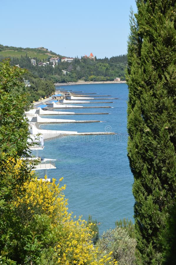 Odgórny Panoramiczny widok denny wybrzeże z naturalnymi falochronami z cyprys ramą, gorący letni dzień zdjęcia royalty free