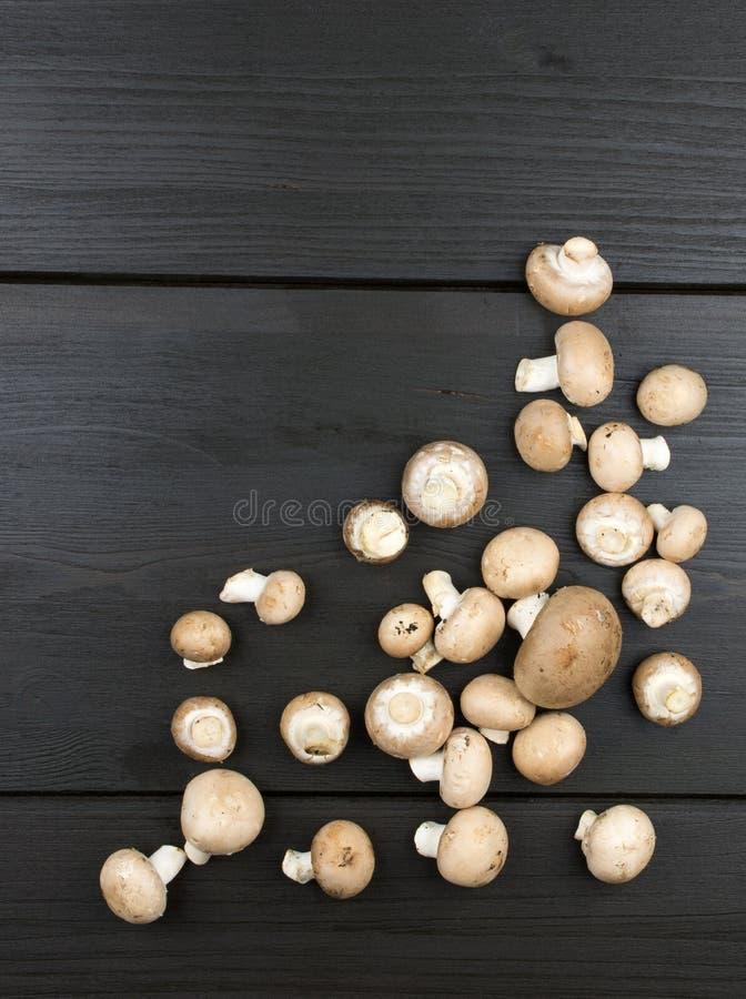 Odgórny widok świeże pieczarki na ciemnym drewnianym tle zdjęcie royalty free