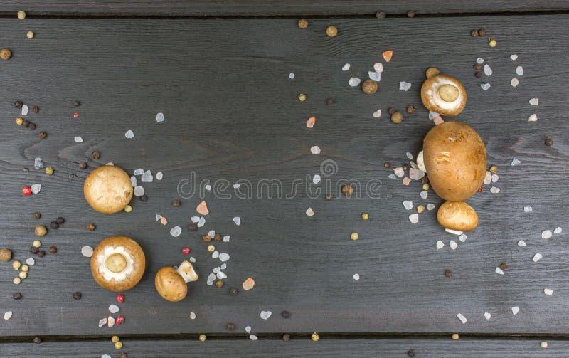 Odgórny widok świeże pieczarki z peppercorn solą na zmroku i mieszanką fotografia royalty free
