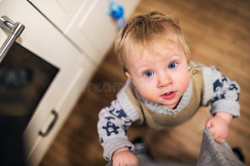 Odgórny widok berbeć chłopiec przyglądający up w domu z bliska zdjęcie royalty free