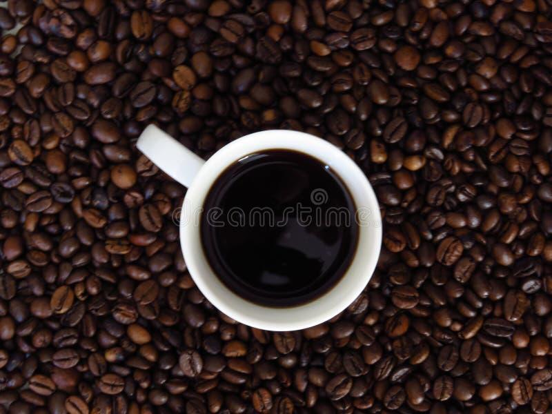 Odgórny widok biała filiżanka ciemna kawa na kawowych fasoli tle fotografia stock