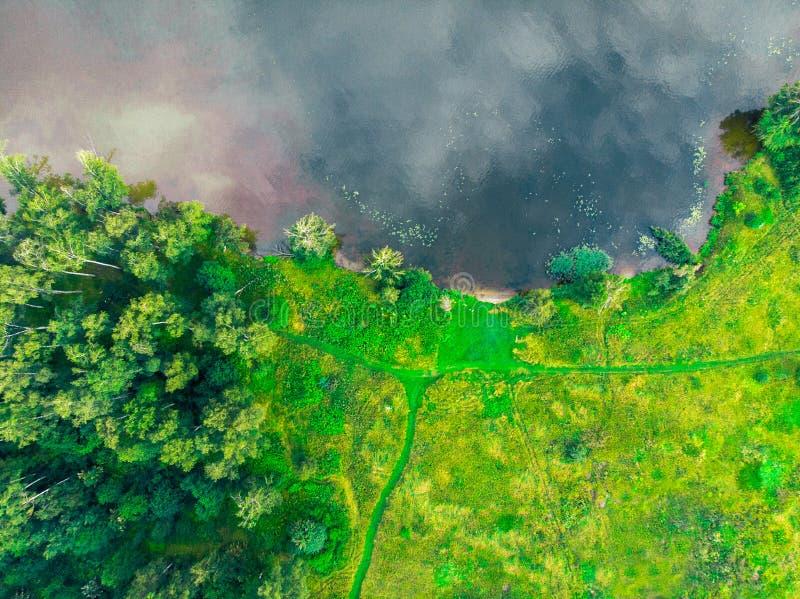 Odgórny widok brzeg rzeki, zielony las i pole, fotografia royalty free