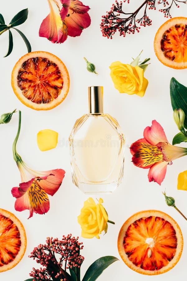 odgórny widok butelka otaczająca z kwiatami i krwionośnej pomarańcze plasterkami aromatyczny pachnidło zdjęcie royalty free