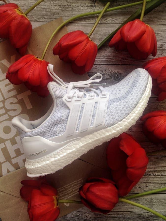Odgórny widok, flatlay z Adidas sneakers fotografia stock