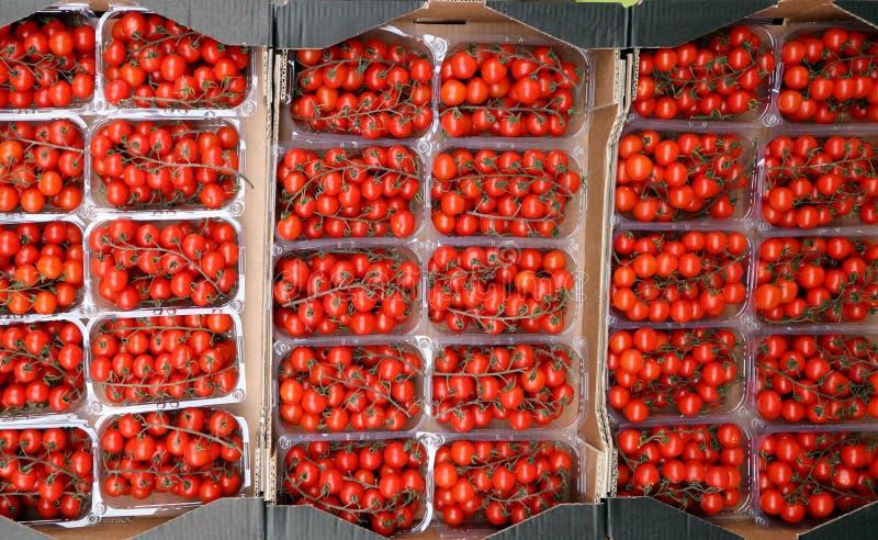 Odgórny widok kilka plastikowi zbiorniki pełno czereśniowi pomidory przy warzywo rynkiem, zdjęcie royalty free
