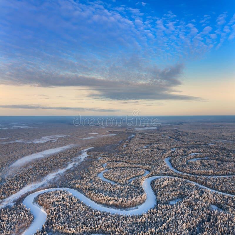 Odgórny widok lasowa rzeka w zimie zdjęcie stock