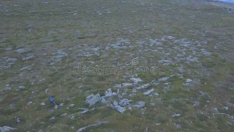 Odgórny widok mężczyzna podróżnik w zielonym polu klamerka Pojęcie wolność i przygoda obrazy royalty free