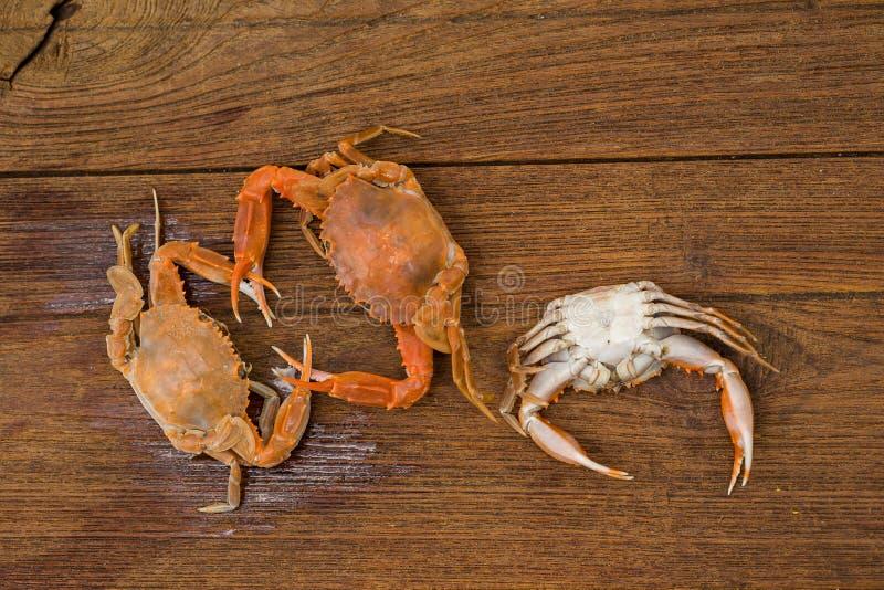 Odgórny widok odparowany koński krab na drewnianym stole zdjęcie royalty free