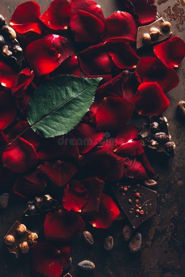 odgórny widok piękni czerwieni róży płatki, zielony liść i smakosz czekolada z hazelnuts, zdjęcie stock