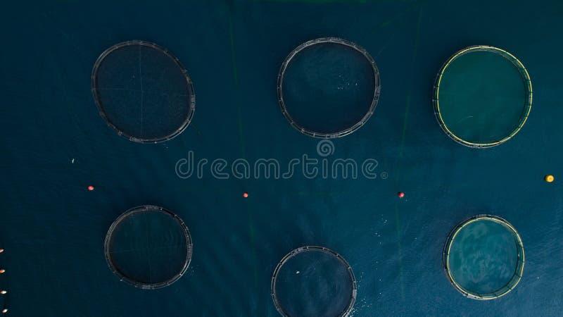 Odgórny widok przy round stawami okrążającymi z siecią rybi gospodarstwo rolne w Adriatyckim morzu obrazy stock