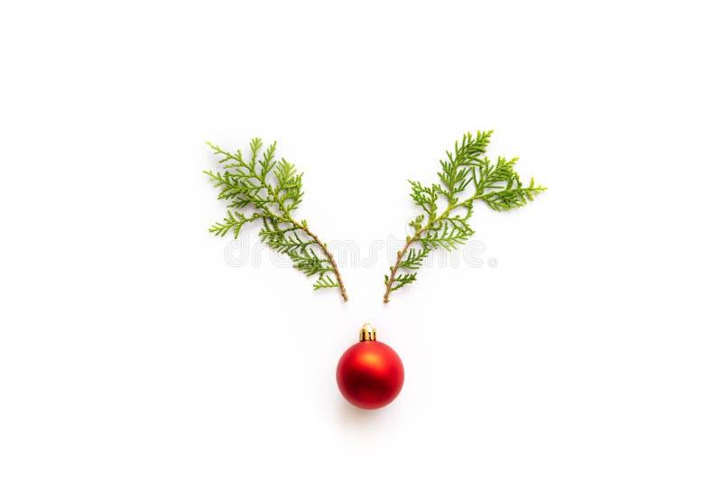 Odgórny widok sosnowa jodła rozgałęzia się z czerwonym dzwonem w kształcie renifer na białym tle zdjęcie stock