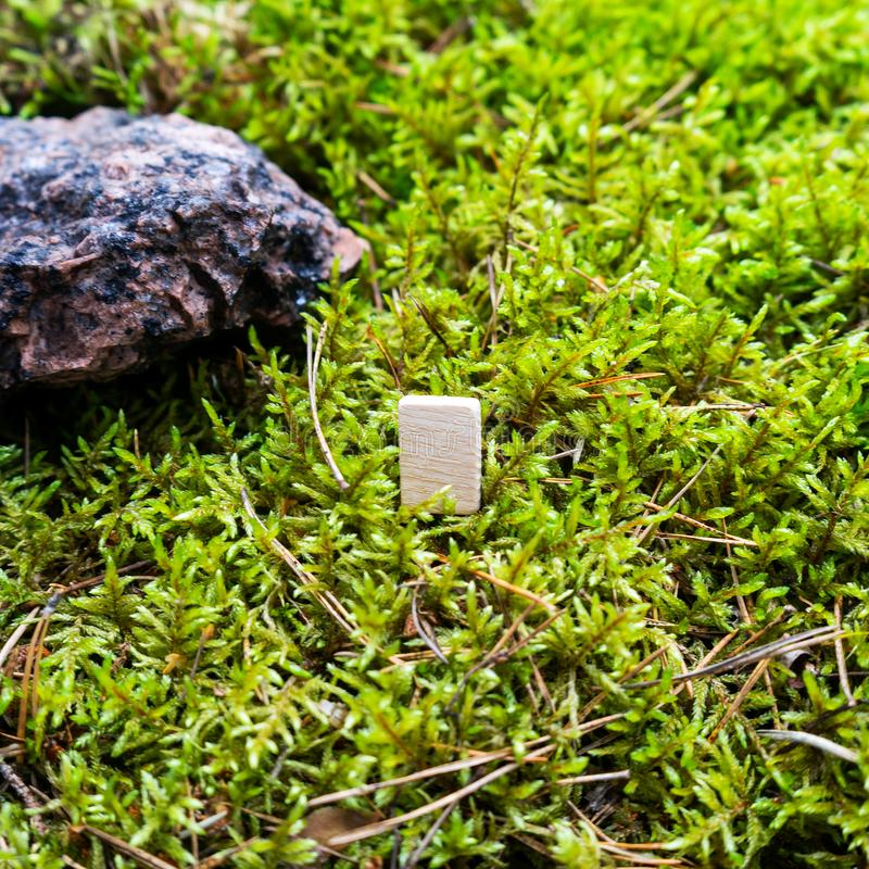 Odin`s Scandinavian rune, empty rune, on wet moss. The concept of predicting the future, an ancient way of divination stock photos