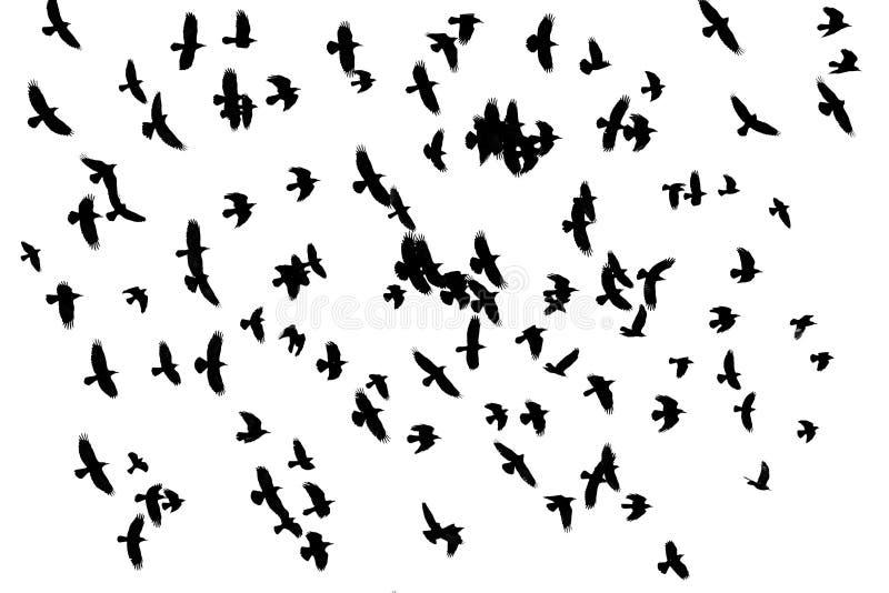 Odin-Vögel, die über den Himmel, eine Menge von Türmen auf einem weißen Hintergrund fliegen stockfoto